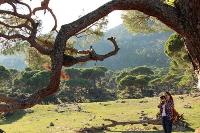 Beşparmak Dağları'nda koruma sınırları çizildi