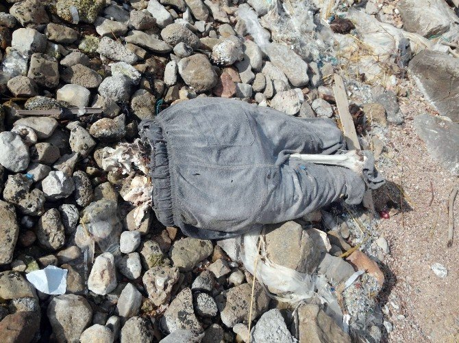 Marmaris Sahilinde Tanınmayacak Halde Erkek Cesedi Bulundu