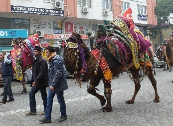 Burhaniye'de Mehterli Ve Develi Festival Korteji