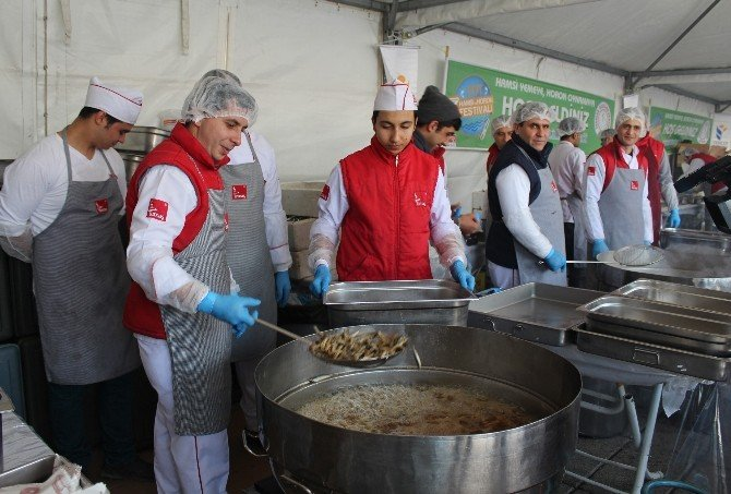 Hamsi Ve Horon Festivali'nde 5 Ton Hamsi İkram Edildi