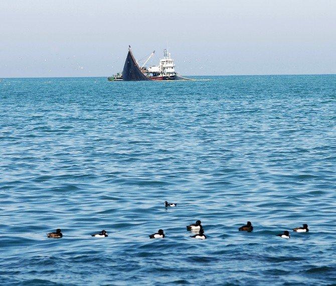 Trabzonlu Vatandaşlar Sıcak Havayı Fırsat Bilerek Parklara Akın Etti