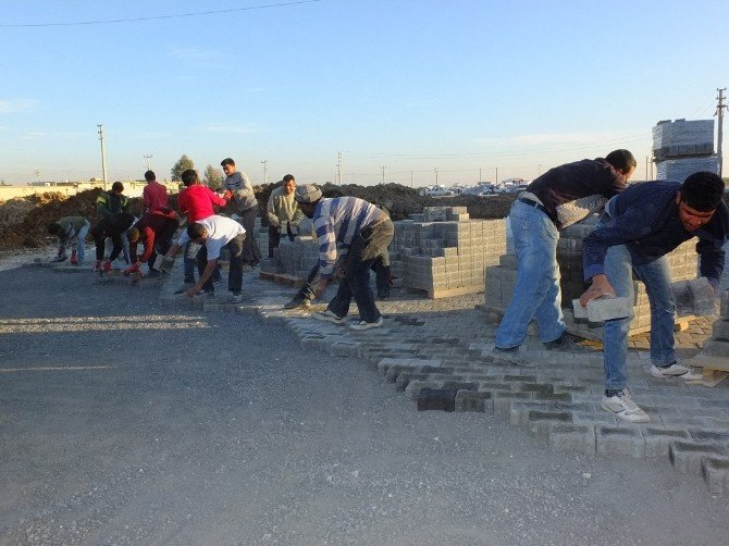 Harran'da Parke Döşeme Çalışması Devam Ediyor
