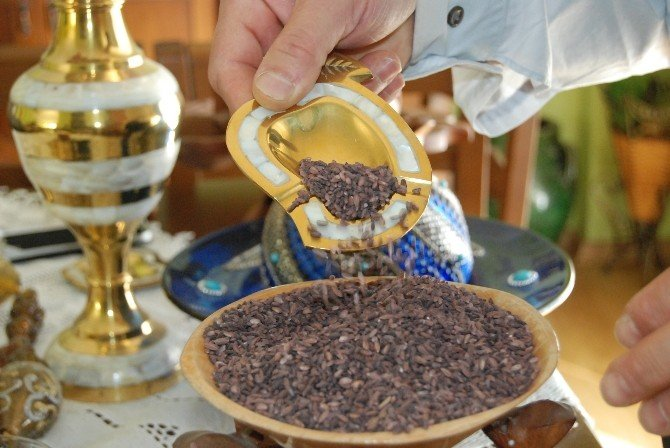 Kahramanmaraş'ta 1,5 Ton Siyah Pirinç Üretildi