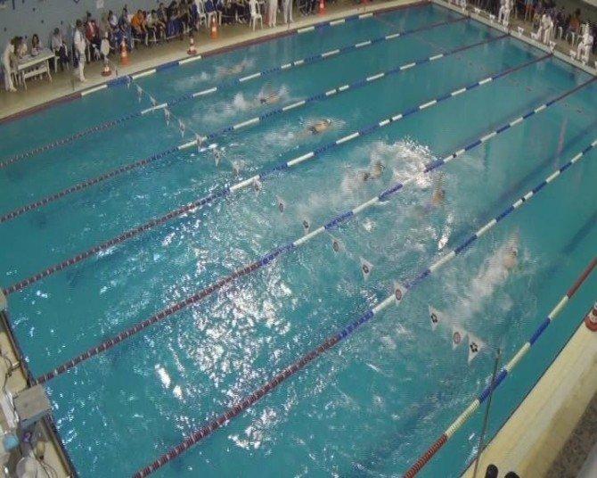Olimpik Kulaçlar Kış Finali Son Erdi