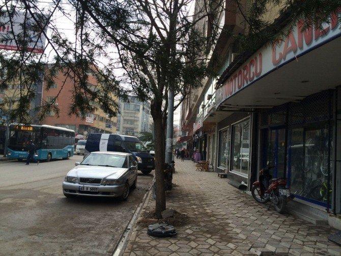 Somalı Esnafın Mağduriyetini Büyükşehir Giderdi