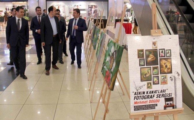"""Konya'da """"Aşkın Kanatları""""isimli Fotoğraf Sergisi"""
