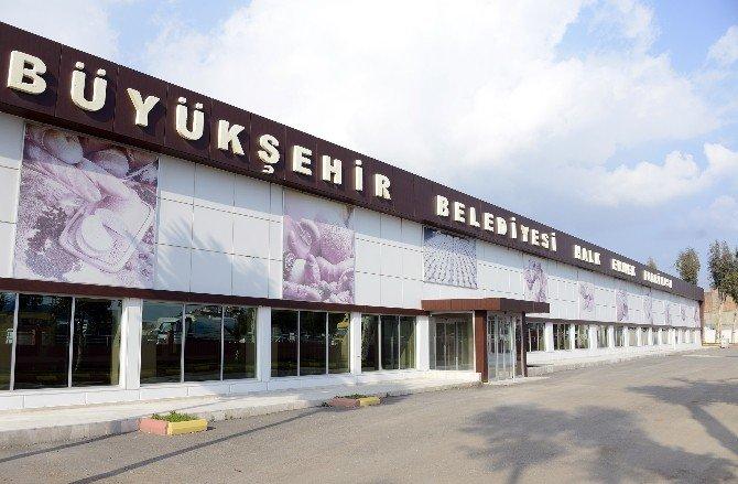 Halk Ekmek Fabrikası Hizmete Giriyor