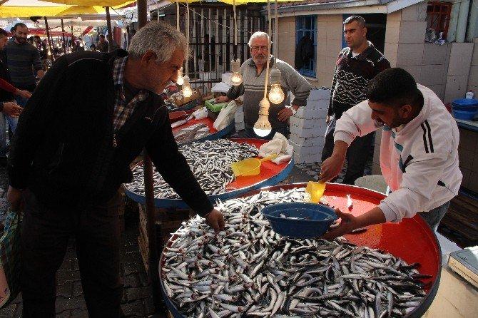 Balık Fiyatları Yarıya Düştü
