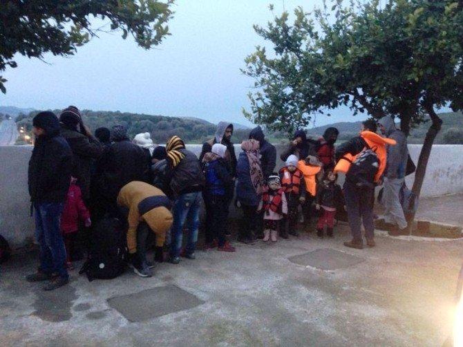 Didim'de Jandarma 177 Suriyeli'yi Yakaladı