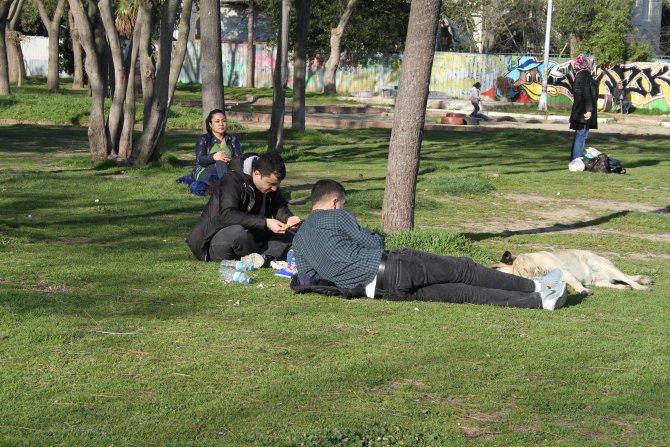 İstanbul'da sıcak havayı gören kendini dışarı attı