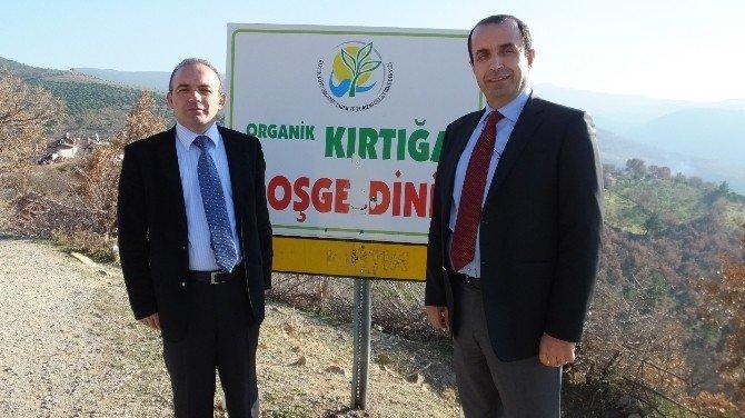 Organik Tarım İçin Seferberlik Başlatıldı