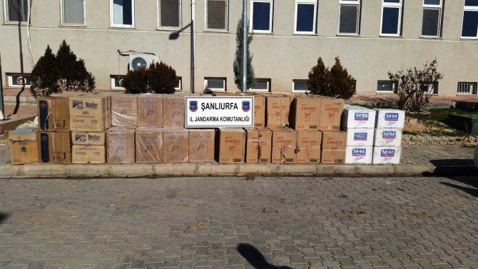 Şanlıurfa'da 100 bin paket kaçak sigara ele geçirildi