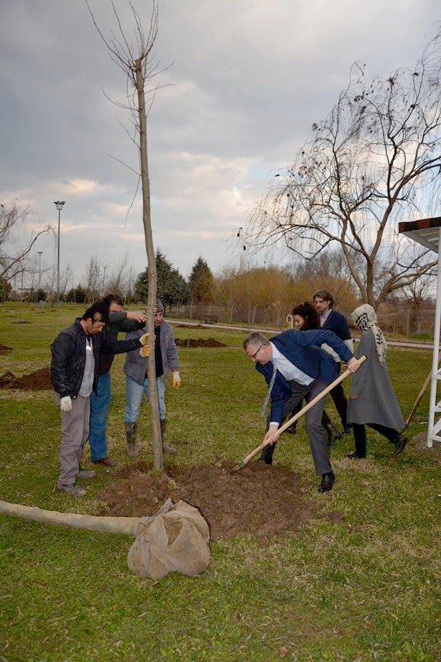 Karacabey'de ağaçlandırma çalışmalarına hız verildi