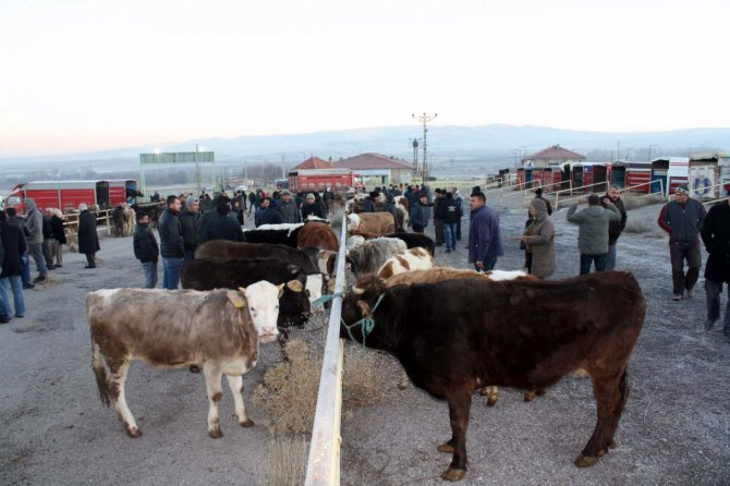 Besici, hayvan pazarının açılmasına sevindi