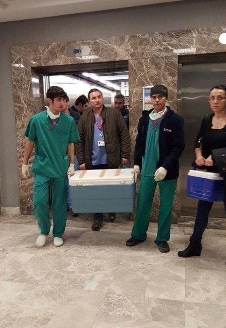 Koca Kurbanı Kadının Organları Başkalarına Hayat Verdi