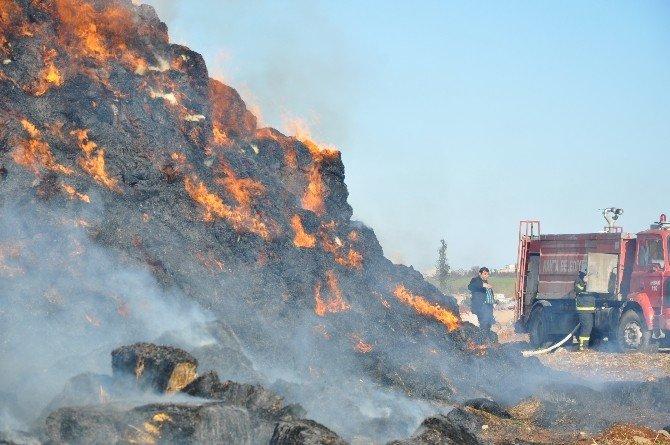 Çiftlikte Çıkan Yangında 5 Bin Balya Saman Kül Oldu