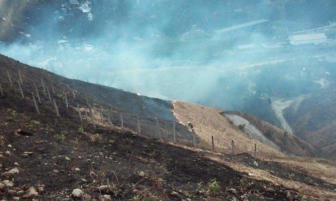 Çayeli'nde Örtü Yangını