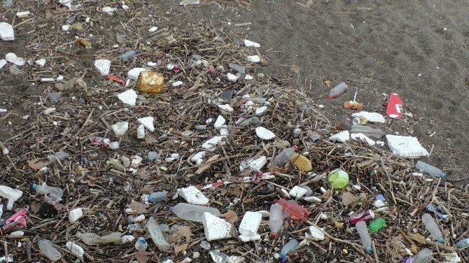 Karadeniz Sahilleri Çöple Doldu
