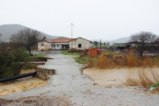 Foça'da Şiddetli Sağanak Hayatı Felç Etti