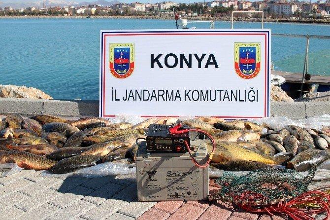 Beyşehir Gölünde Elektroşokla Avlanmaya Suçüstü