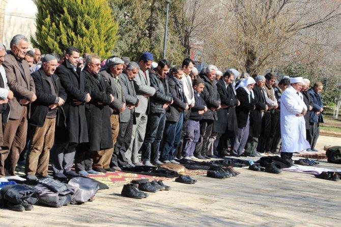 Nusaybin'den Cizre'ye yürümek isteyen gruba müdahale
