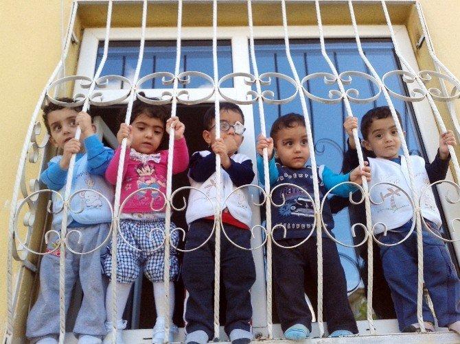 Türkiye'nin İlk Beşizleri Büyüdü Ekmek Beşe Çıktı Süte Su Karıştı