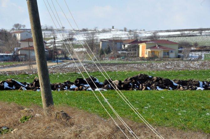 Edirne'nin köyleri karanlığa gömüldü