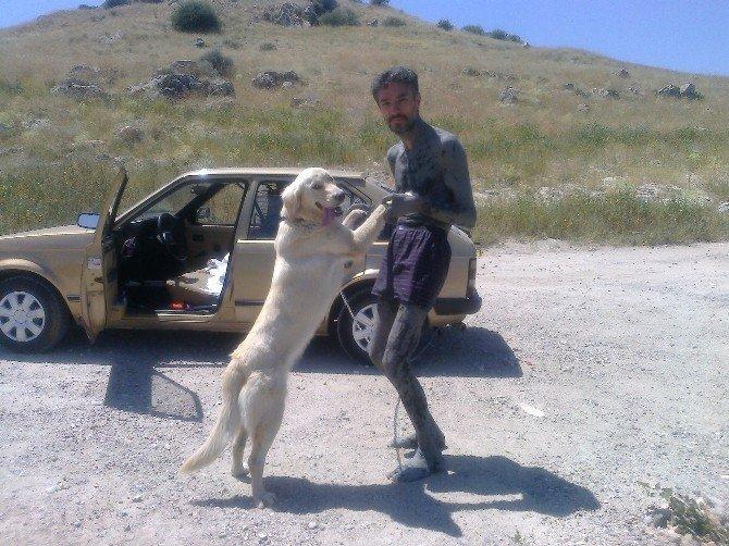 Felçli Adamı Ayağa Kaldıran Köpeği Bulana Ödül