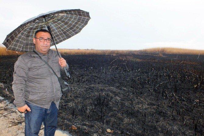 Göksu Deltasındaki Yangını Yağmur Söndürdü