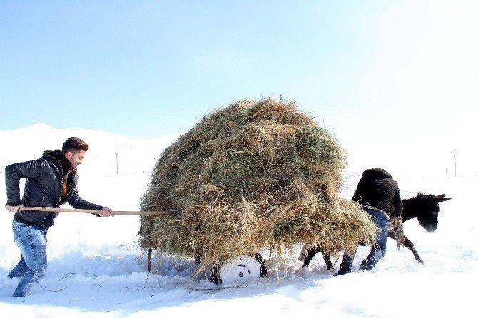 Van'da Zorlu Kış Şartları
