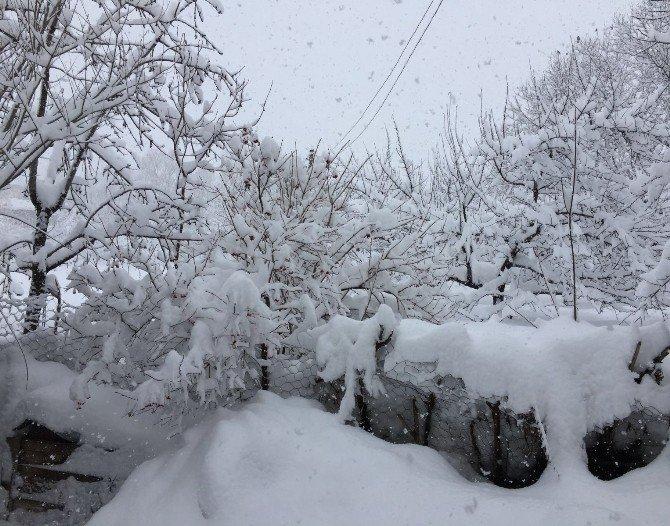 Yedisu'da Kar Esareti