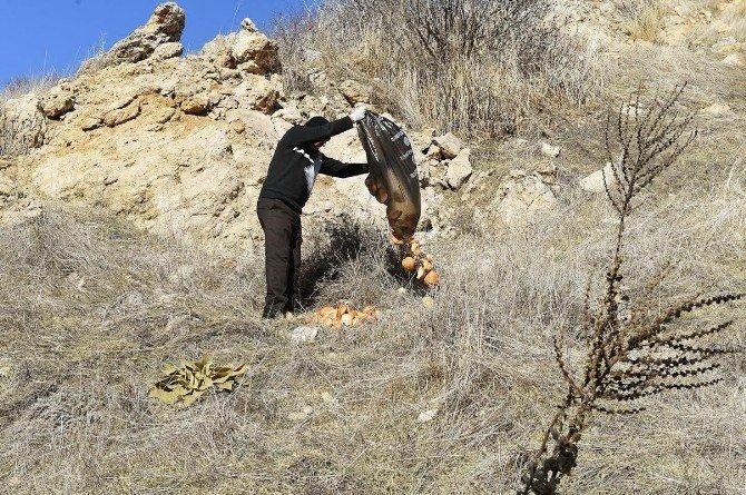 10 Bin Kilo Ekmek Çöpe Atmaktan Kurtarıldı