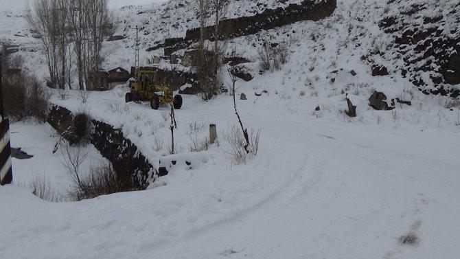 Kar sonrası görsel şölen oluşurken hayvanlar yiyecek bulma telaşında