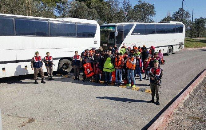 Balıkesir'de 200 Mülteci Yakalandı