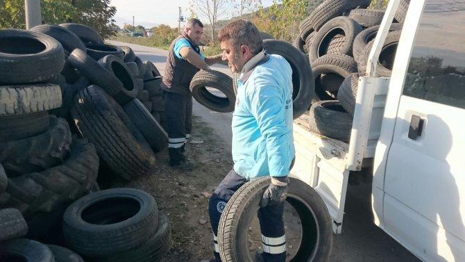 Sinek üreten eski araç lastikleri mercek altında
