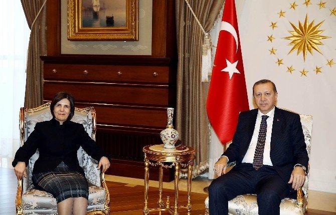 Cumhurbaşkanı Erdoğan, KKTC Cumhuriyet Meclisi Başkanı Siber'i Kabul Etti