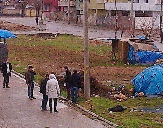 Kızıltepe'de Bulunan Cesedin Kimliği Belirlendi