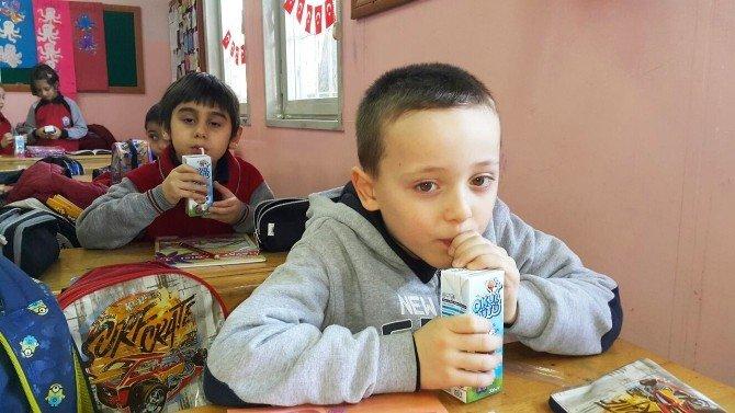 İkinci Dönem Okul Sütü Projesi İle Başladı