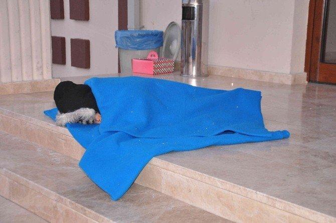 Fethiye'de 42'si Çocuk 123 Sığınmacı Yakalandı