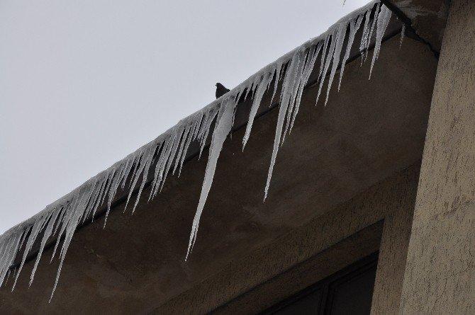 Buz Sarkıtları Korkutuyor