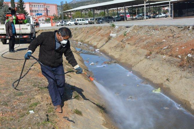 Kozan'da larva ile mücadele başladı