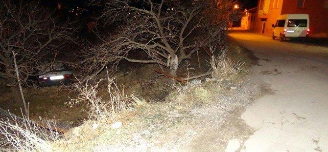 Malatya'da Otomobil Bahçeye Uçtu: 1 Yaralı
