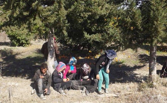 Suriyelilerin kavgasında kan aktı: 1 ölü