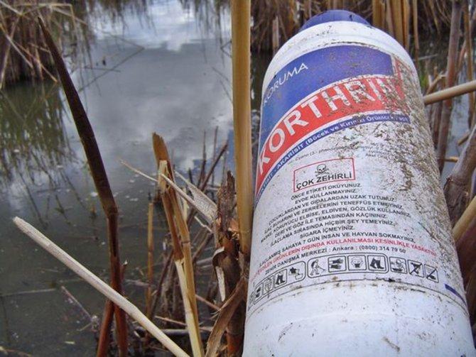 Azap Gölü'ndeki kirlilik tehlikeli boyutlarda