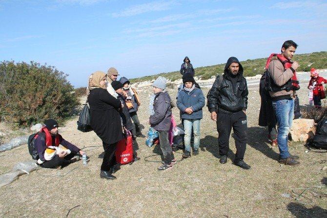 Didim'de 424 Göçmen Umut Yolculuğunda Yakalandı
