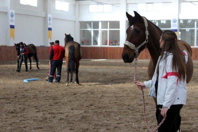 Engeller Atlarla Aşılacak