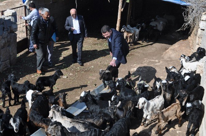 """Turgut: """"Vatandaşın Ayağına Gidip Sorunları Çözüyoruz"""""""