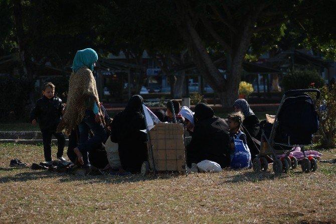 İskenderun'da Bahardan Kalma Günler Yaşanıyor