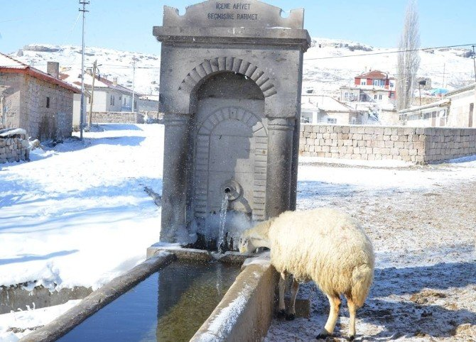 Pınarbaşı'nın Ayvacık Köyü Eski İsmi Olan Cabe'yi Geri Alıyor
