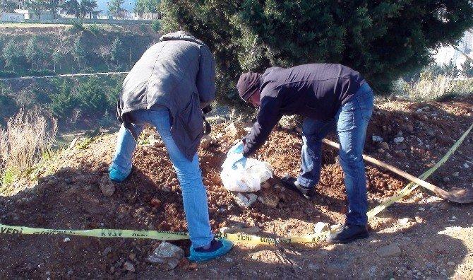 Mezarlık Yanına Gömülen Köpek Yavrusu Polisi Alarma Geçirdi
